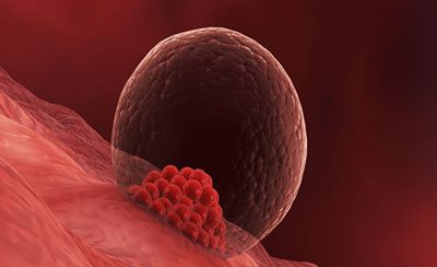 O que é receptividade endometrial